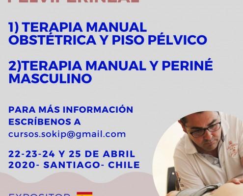 DIAGNÓSTICO Y TERAPIA MANUAL EN EMBARAZADAS Y POSTPARTO abordaje kinésico en disfunciones urológicas y periné masculino (1)